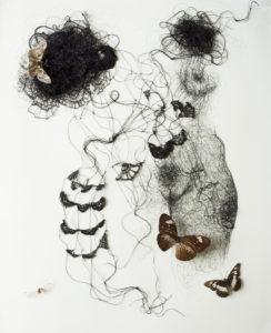Dentelle #2, 2018. Encre, fil de soie crocheté, papillons naturalisés, sous vitrine, 40 x 50 cm.