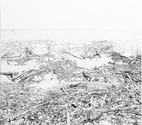 Patricia STHEEMAN, « A tribute to Noah », 2015. Encre sur papier et toile, 220 x 250 cm.